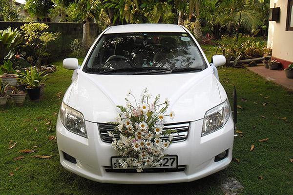 Hình ảnh cho thuê xe hoa tự lái