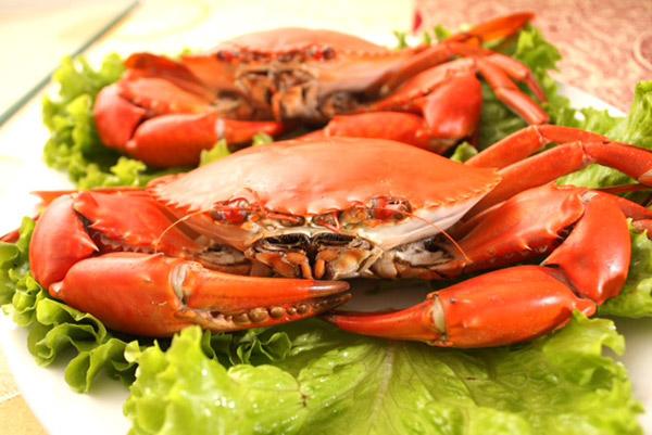 Hình ảnh cho thuê xe du lịch đi Cần Giờ ăn hải sản