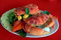 Cho thuê xe du lịch thưởng thức hải sản quý mà rẻ