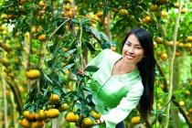 Cho thuê xe du lịch đi Vĩnh Long khám phá miệt vườn