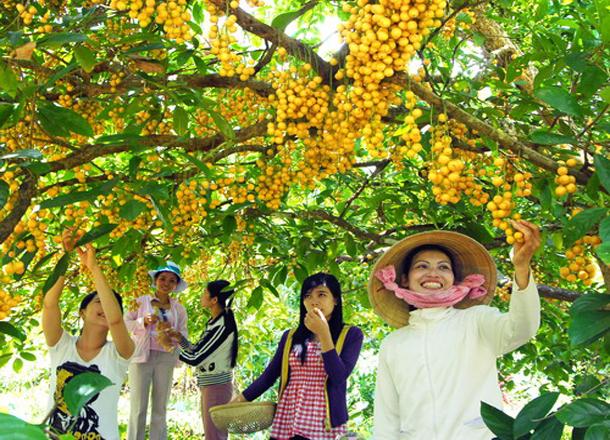 Thuê xe du lịch về Tiền Giang