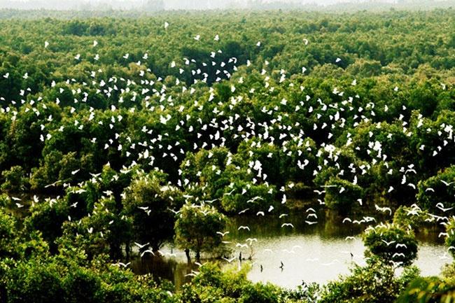 Vườn quốc gia Tràm Chim, Đồng Tháp