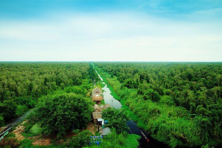 Đi thuyền khám phá rừng tràm U Minh Hạ